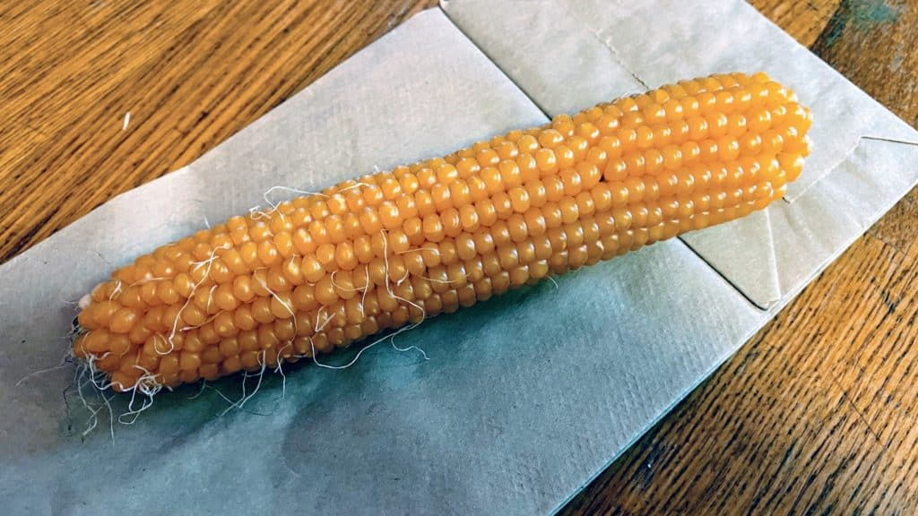 Yellow corn on the cob laying on a white paper napkin.